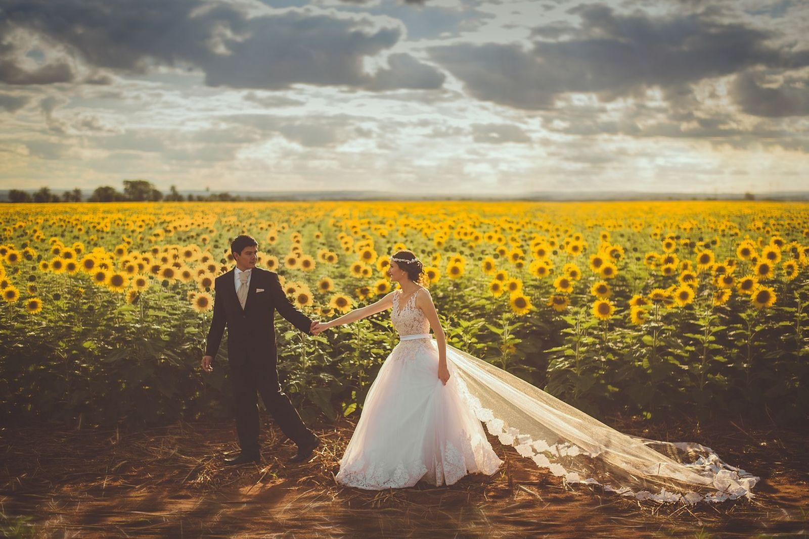 outdoor ceremony - wedding celebrant Bristol