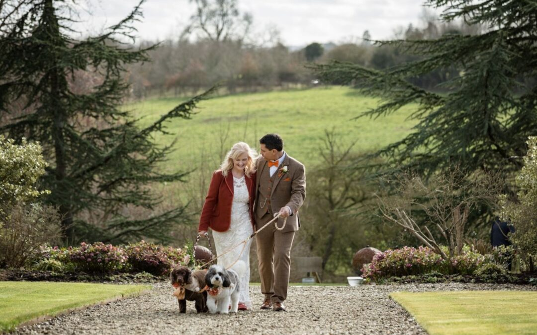 Dog Friendly Weddings – How To Include Your Dog At Your Wedding